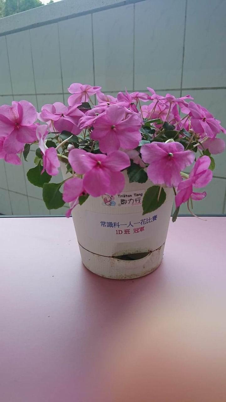 https://www.plkcjy.edu.hk/sites/default/files/diao_zheng_da_xiao_1d_guan_.jpg